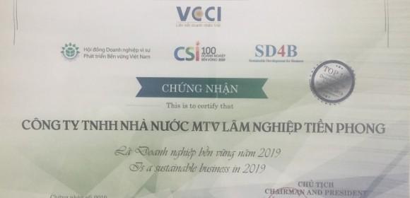 VCCI 2019
